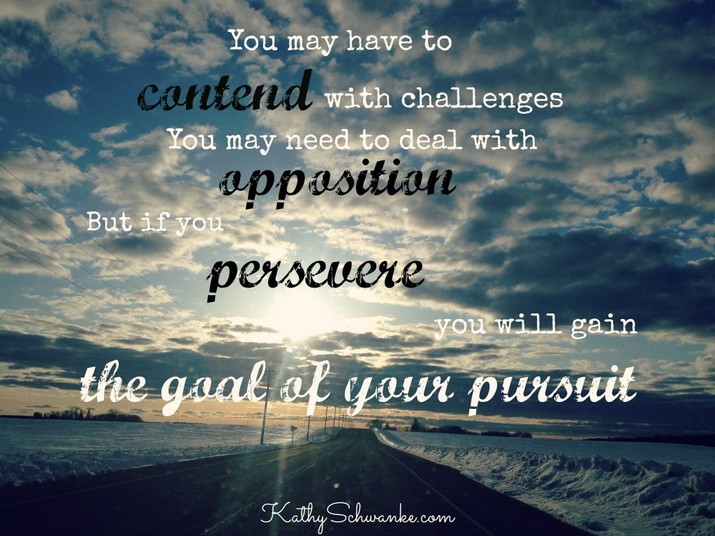 Persevere1