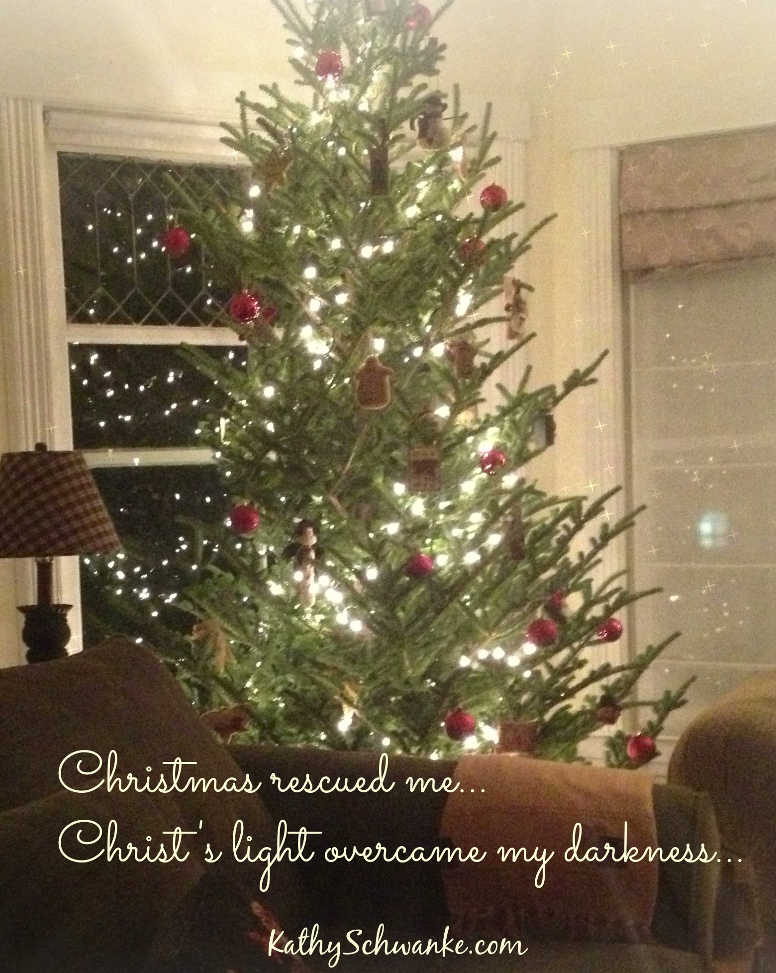Christmas Rescued Me