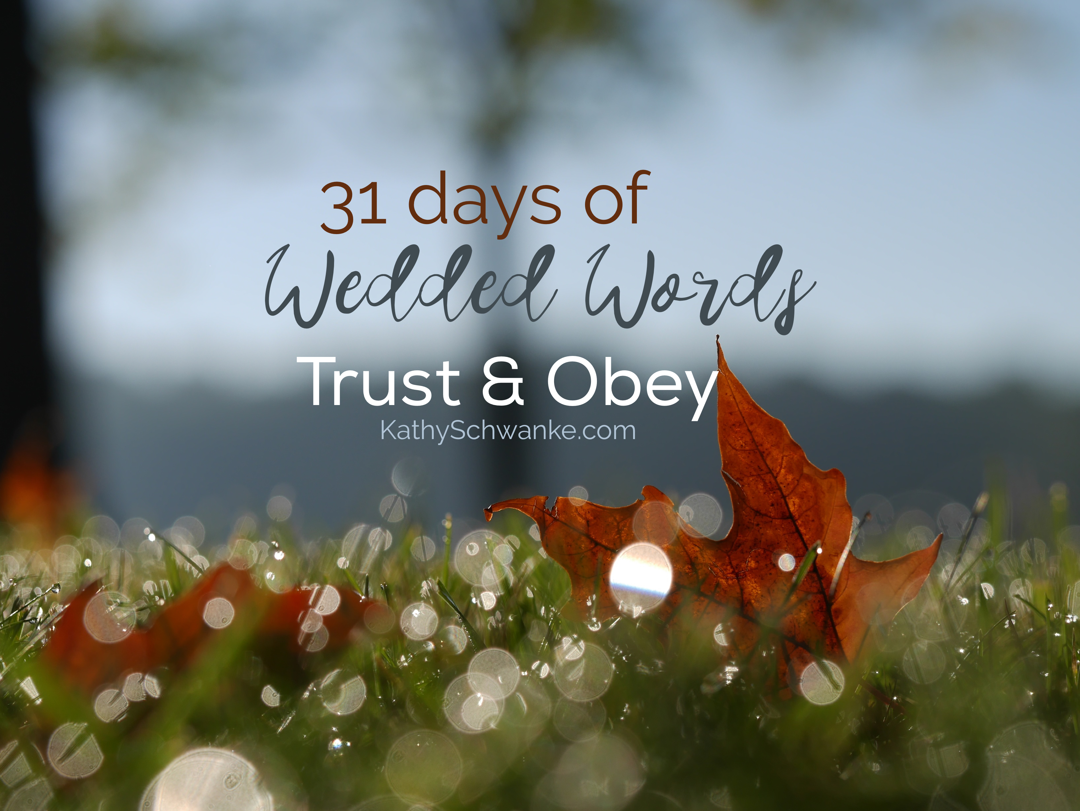 Trust & Obey: 31 Days of Wedded Words & A Giveaway
